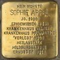 Arnstadt-Stolperstein-Sophie-Appel-CTH.JPG