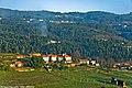 Arredores de Silva Escura - Portugal (4601143220).jpg