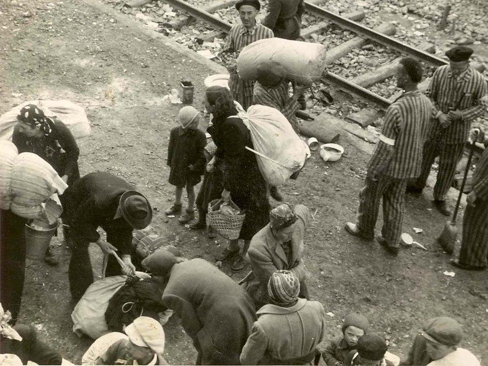 Arrivals and inmates on the ramp at Auschwitz-Birkenau, summer 1944 (Auschwitz Album)