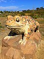 Artwork of red-legged frog at Malibu.jpg