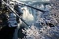 Athabasca Falls October 2009 (1).jpg