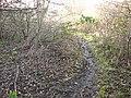 Attenborough Nature Reserve Path - geograph.org.uk - 1126837.jpg