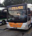 Autobus MAN Lion's City G CNG ACTV Venezia, Linea 7.jpg