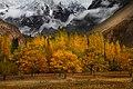 Autumn in Hunza Valley Pakistan.jpg