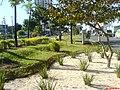 Av Marechal Carmona - panoramio - Paulo Humberto (4).jpg