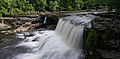 Aysgarth Falls MMB 11.jpg