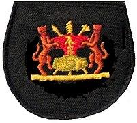 BDF Rank Warrant Officer class 2.jpg