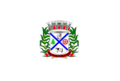 Bandeira Borebi.png