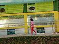 Bangabandhu Safari Park Cox's Bazar 12.JPG