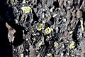 Basalt with Olivine (23786272990).jpg