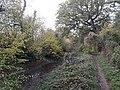 Basingstoke Canal, Up Nately 03.jpg