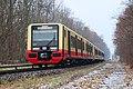 Baureihe 483-484 der S-Bahn Berlin.jpg