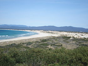 Beach at St Helens 01.JPG