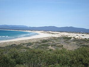 St Helens, Tasmania - Image: Beach at St Helens 01