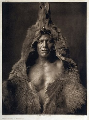 Bear's Belly by Edward Curtis, 1908.jpg