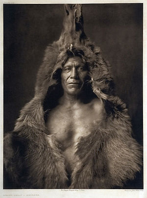 Arikara - Arikara man wearing a bearskin, 1908