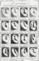 Bertillon - Identification anthropométrique (1893) 333 n&b.png