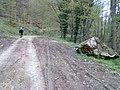 Biciklom,Velika - Jankovac - panoramio.jpg