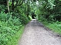 Biddulph Valley Way - geograph.org.uk - 1396457.jpg