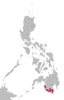 South Mindanao languages Subgroup of the Austronesian language family