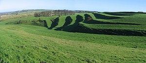 Lynchet - Lynchet system near Bishopstone in Wiltshire
