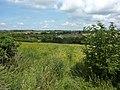 Bit of wasteland in farmland, Chaddesden, Derby - geograph.org.uk - 2502412.jpg