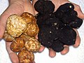 Black White Truffle.JPG