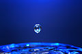 Blue drop 3 (2063800579).jpg