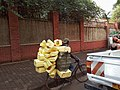 Boda Driver in Kampala Carries many Jerry Cans.jpg
