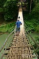 Bohol Bamboo Bridge Loboc River.jpg