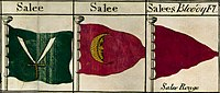 The flag of the Republic of Salé./Ph. DR