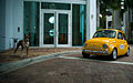 Boxer dog and yellow Fiat 500.jpg