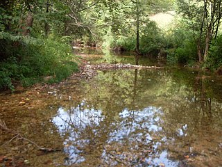 Breeden Creek