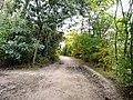 Bridleway to Audenshaw - geograph.org.uk - 1493641.jpg