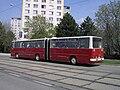 Brno, Královo Pole, Purkyňova, Ikarus 280.jpg