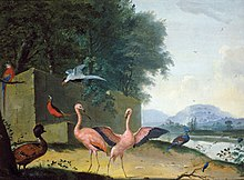 Bronckhorst An Assembly of Exotic Birds, including Flamingoes, Parrots and a Lady Amherst Pheasant.jpg