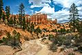 Bryce Canyon scenes - (19922835120).jpg