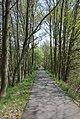 Burg (Spreewald) - Radweg 0003.jpg