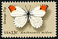 Butterfly Orange-Tip 13c 1977 issue U.S. stamp.jpg