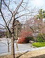 Byodoin 平等院 - panoramio (1).jpg
