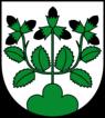 CHE Hasle (Luzern) COA.png