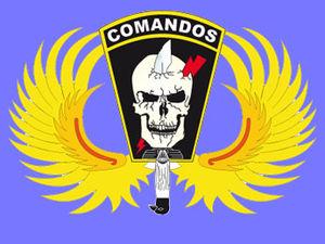 Para-SAR - Image: COMAND