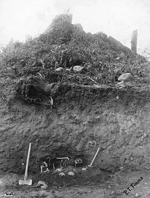 Great Marpole Midden - 1908 excavation