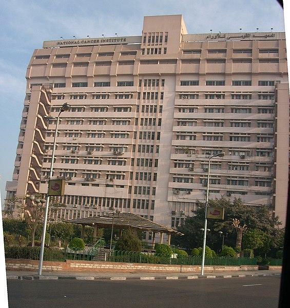 File:Cairo Univ - National Cancer Institute.jpg