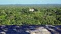 Calakmul-12.jpg