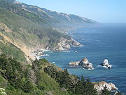 Remote areas of coastline, such as this area in California, sheltered the few remaining colonies of sea otters that survived the fur trade.