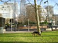 Canada Square in a sunny day - panoramio.jpg