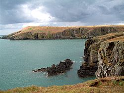 Cardigan Island - geograph.org.uk - 38426.jpg