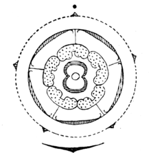 Asteraceae wikipedia flower diagram of carduus carduoideae shows outermost to innermost subtending bract and stem axis fused calyx fused corolla stamens fused to corolla ccuart Image collections