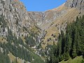 Cascada-Vaii-Rele.jpg